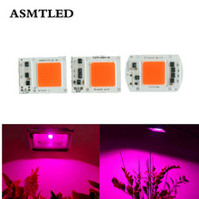 AC 220V Full Spectrum COB LED Grow light chip 20W 30W 50W LED lamp DIY Grow light Floodlight Indoor Plant Seedling Grow & Flower(China)
