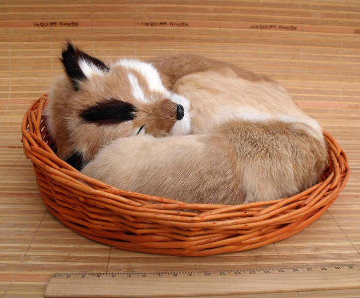new simulation sleeping fox toy lifelike natural colour fox in a basket doll gift 27x12x27cm simulation animal large 28x26cm brown fox model lifelike squatting fox decoration gift t479