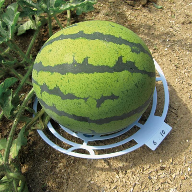 Melon Squash Cradle Watermelon Cradle Plant Support Garden Support Protector For Watermelon