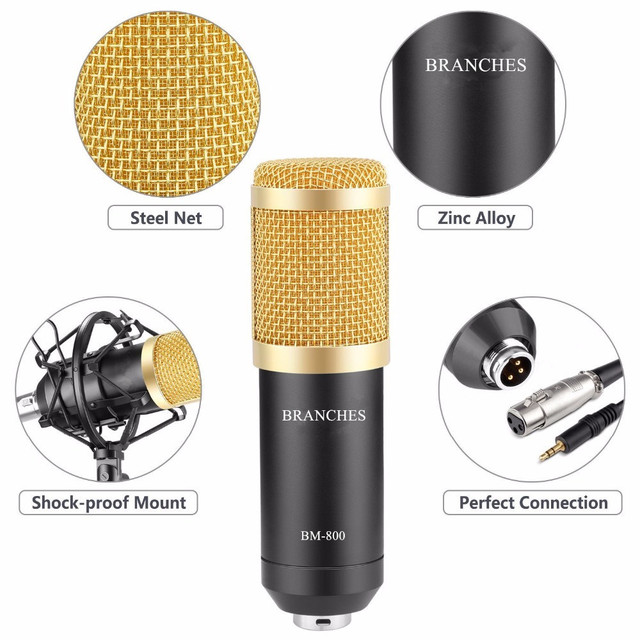 BM 800 Condenser Sound Recording Microphone