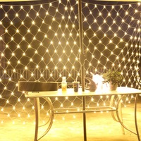 FS LED Net Lights 2*3m,4*6m,8*10m Net Fairy Twinkle Flash Lamp Home Christmas Wedding Xmas Party Garland Decoration