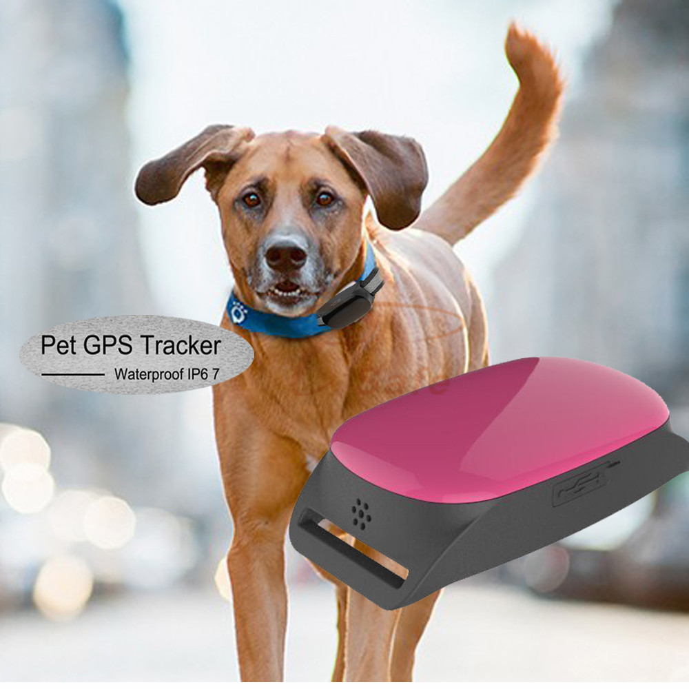 Free APP for IOS/Android Mini Pet GPS Tracker Waterproof Smart GPS Tracker With Collar For Pets Cat Dog GPS+LBS Location mini pet collar gps tracker ip66 waterproof real time google maps tracking locator for dog cat kids 2g network free app