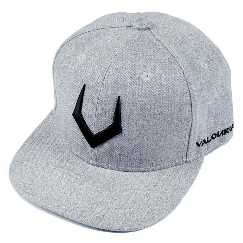 Gorro de lana gris de alta calidad snapback bordado 3D gorra de hip hop gorra de béisbol plana para hombres y mujeres gorra de papá envío gratis