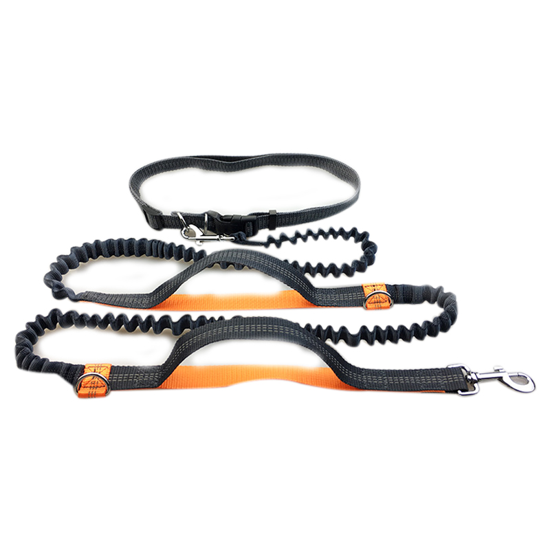 Pet Supplies Multi-function Running Reflective Tape Dog Leash Double Elastic Dog Leash Traction