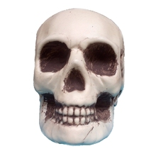 Mini Plastic Human Skull Decor Prop Skeleton Head Halloween Coffee Bars Ornament VQW5646