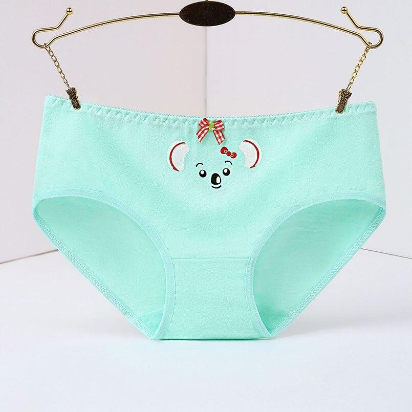 cute koala girls panties 3