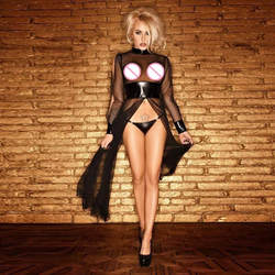 Сексуальная Перспектива белье Для женщин Sheer Mesh Черный Искусственная кожа готический костюм ночная рубашка женская Wetlook корсет Прозрачный