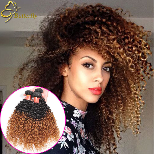 Ombre Malaysian Curly Hair 3 Bundles Blonde Weave 1b 27