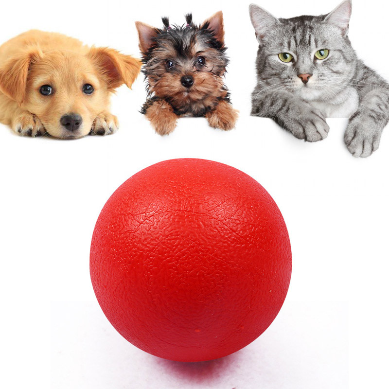 Hot Cute Pet Ball Toys Red Solid Elastic Puzzle Rubber Chew Game Training Pet Dog Toy LXY9 MY1618