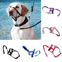 Nylon Dogs Head Collar Dog Training Halter Blue Red Black Colors S M L XL XXL Sizes dřevěné dekorace do dětského pokoje
