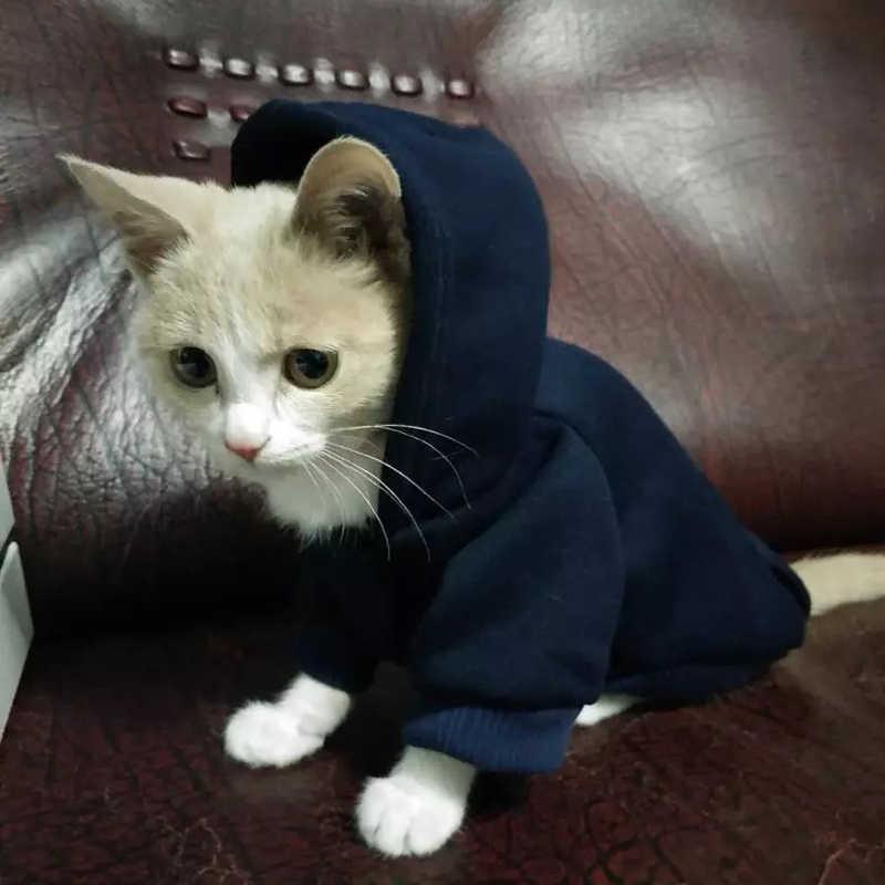 חיות מחמד חתול הסווטשרט סוודרים חורף חם חתול קטנה חתולי חתלתול מעיל מעיל חתול תחפושות בגדי כלבלב