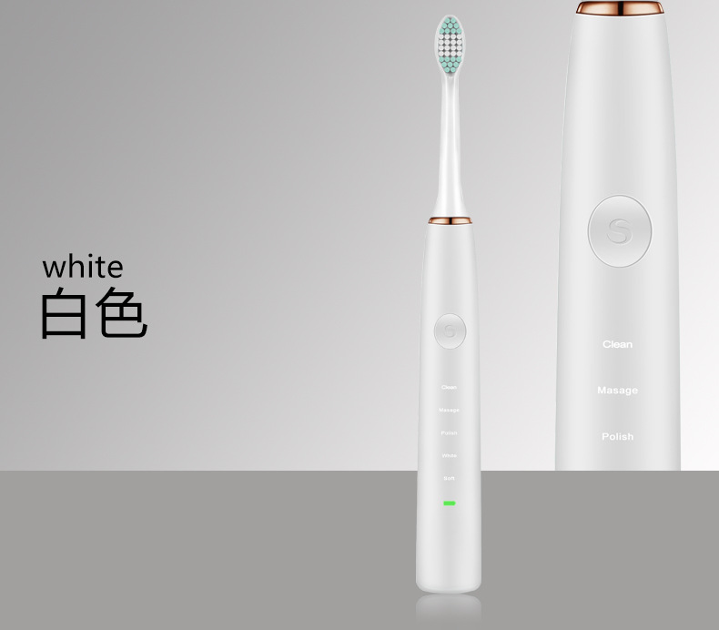 Acoustic Wave Electric Toothbrush Adult Rechargeable Ultrasonic Vibrating Tooth Brush Professional Tooth Cleaner Teeth Machine - 2
