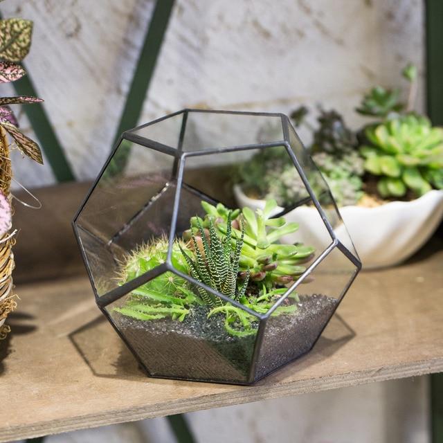 Tabletop Geometric Pentagon Ball Shape Open Glass Display Terrarium Box  Fern Moss Succulent Plants Container Planter