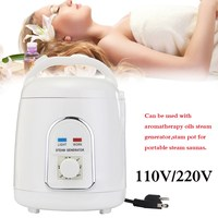 1 8 Litre Steamer Steam Pot For Portable Steam Sauna New Arrival