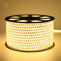 20M 50M 100M High Power SMD2835 LED Strip Light Flexible Outdoor Waterproof Double Row LED Strip 2835 180leds/M 110V 120V IP65