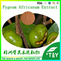 100% Natural Pygeum Bark Extract/Pygeum Africanum Extrato 200g