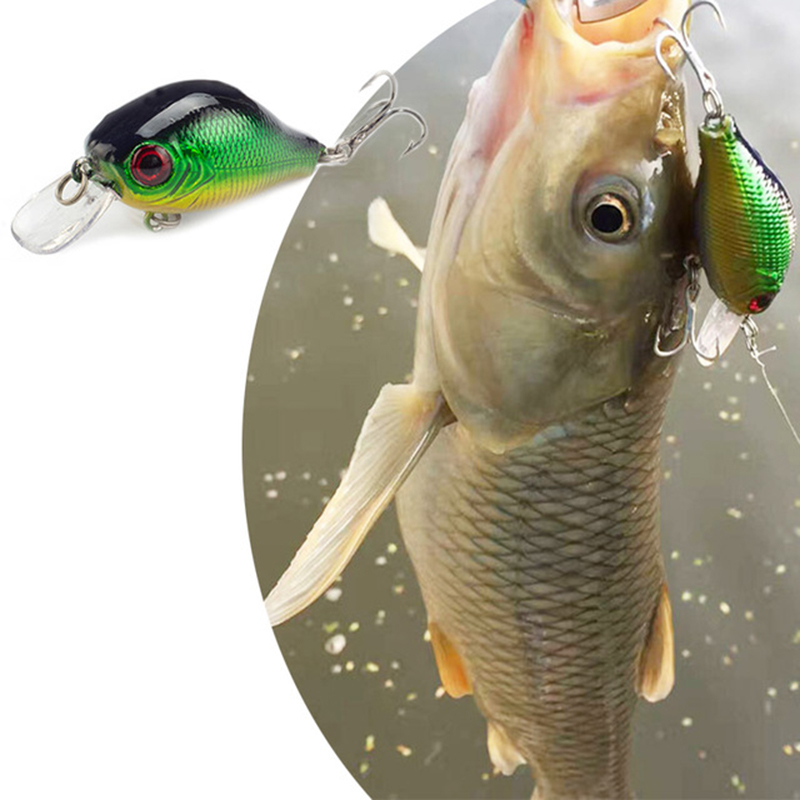SEALURER Flottant Wobbler Pêche VIB Leurre 5cm 9G Mouche Artificielle Pesca Crankbait Dur Appât Jerkbait Tackle 5color Disponible 1Pcs
