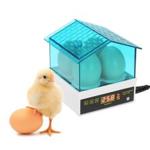 4egg Household Mini Intelligent Automatic Egg Incubator Temperature Control Hatcher for Hatching Chicken Duck Bird Quail Poultry hot sale egg incubator reptile brooder poultry hatcher mini chicken incubator goose duck automatic egg incubator