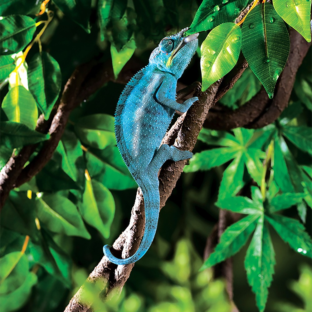 Artificial Water Proof Banyan Vine Jungle Vine For Gecko