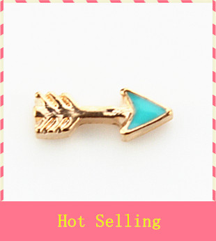 efedc6b7e30e Hot selling 20pcs lot arrow floating charms living glass memory floating  lockets wholesale diy jewelry