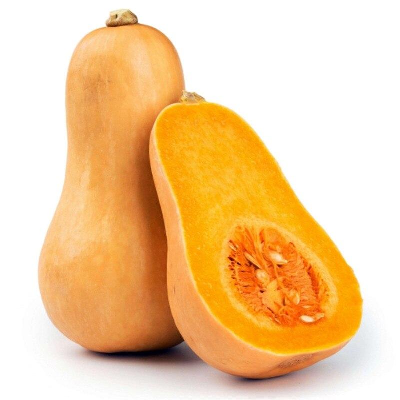 Pumpkin Seeds 5pcs Best Seeds Online Free Shipping