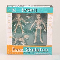 Pose Skeleton Human Child Dog Skeleton Body Chan Pale Orange Color Ver Body Kun Youth Action Figure Model Toy Gift