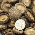 [ГРАНДИОЗНОСТЬ] сушеных китайских грибов Сушеных Грибов Шиитаке сушеные, органических сушеные грибы ПО-КУ Гриб 500 г