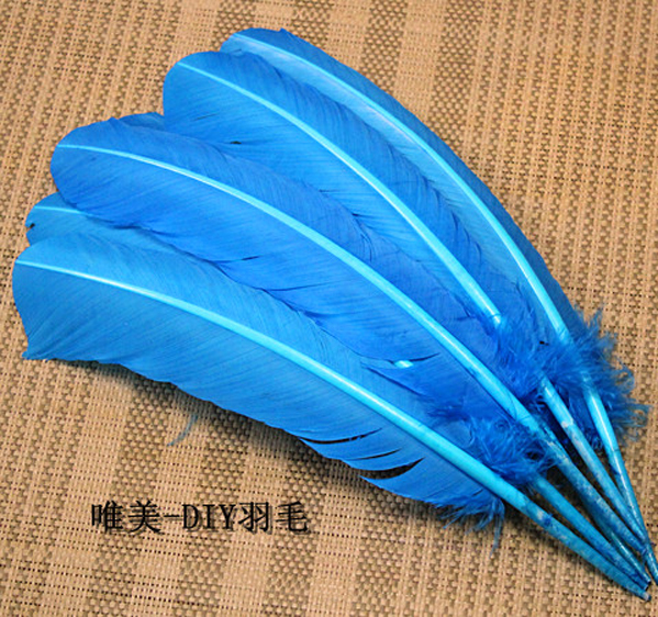 wholesale 100pcs 25-30cm Lake blue color real natural turkey feathers plumes hair extensions goose feather