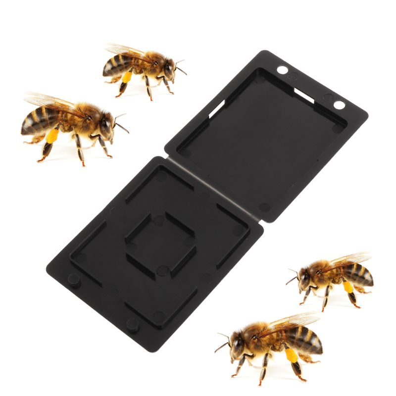 5Pcs Beehive Bee Trap Beetle Collector Insect Container Beekeeping Storage Nest Hive Case Catching Lid For Garden Farmer