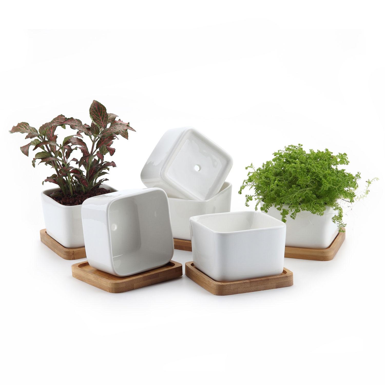 T4U 3.5 pouce en céramique blanc carré no.1 succulent Pot de plante/Cactus Pot avec plateau en bambou gratuit paquet 1 paquet de 6