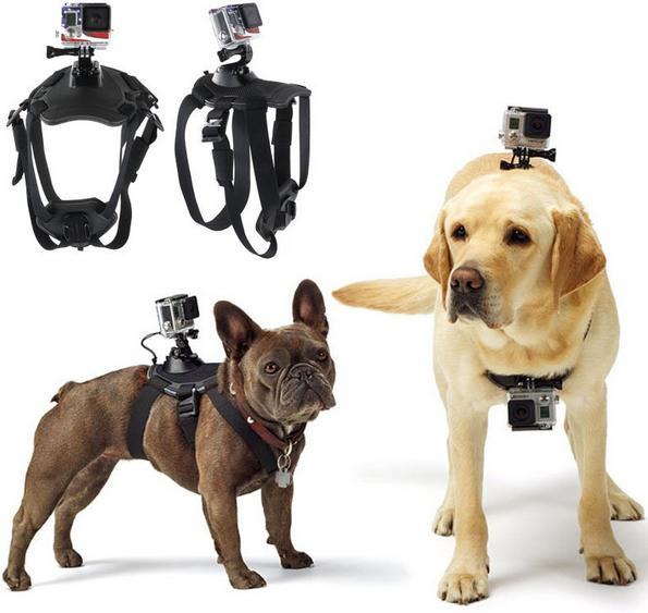 For GoPro Accessories Adjustable Dog Fetch Harness Chest Strap Belt Mount For GoPro Hero 4 3