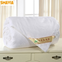 Premium Chinese Mulberry Silk Quilt 100% Silk Comforter 100% Cotton Embossing Fabric Cover Winter/Spring Blankets 2kg 4kg
