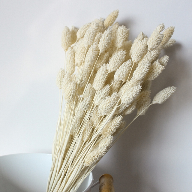 Gem Grass Dry Flower Bouquet DIY Home Decoration Eternal Flower Flower Photography Props  Dried Wheat Decor Natural Plant Dry