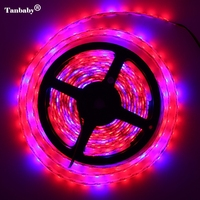 5m Lot LED Grow Lights DC12V Growing LED Strip Tape 5050 IP65 Plant Growth Light Lamp