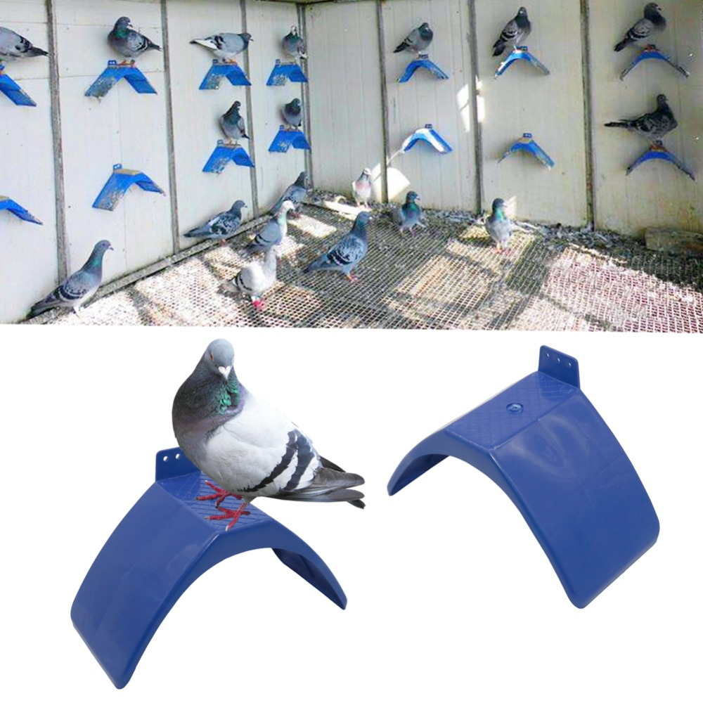 10 Pcs Pigeon Dove Bird House Parrots Plastic Rest Stand Frame Dwelling Perch Shellhard Bird Supplies