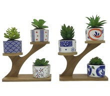 6 PCS Japanese Style Ceramic Succulent Cactus Flower Plant Pots with 2 PCS Treetop Shaped Bamboo Stands for Home Decoration