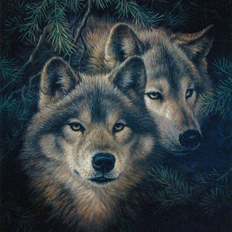 NEW-DIY-5D-Diamond-Painting-Cross-Stitch-animal-two-wolf-Drawings-Pictures-of-Crystals-Whole-Square