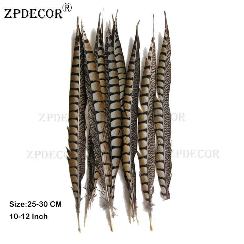 25-30 cm 10-12 Inch Lady Amherst Tail pheasant Feathers Use Arts and Crafts25-30 cm 10-12 Inch Lady Amherst Tail pheasant Feathers Use Arts and Crafts