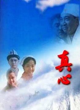 《真心》2001年中国大陆电影在线观看