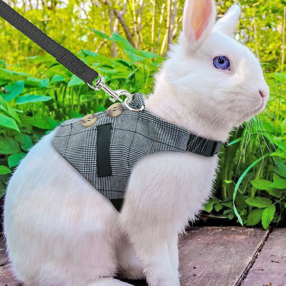 Hamster Rabbit Dog Harness Vest Small Animals Hamster Accessories Pet Puppy Harness Leash Lead Set For Ferret Guinea Pig Kitten