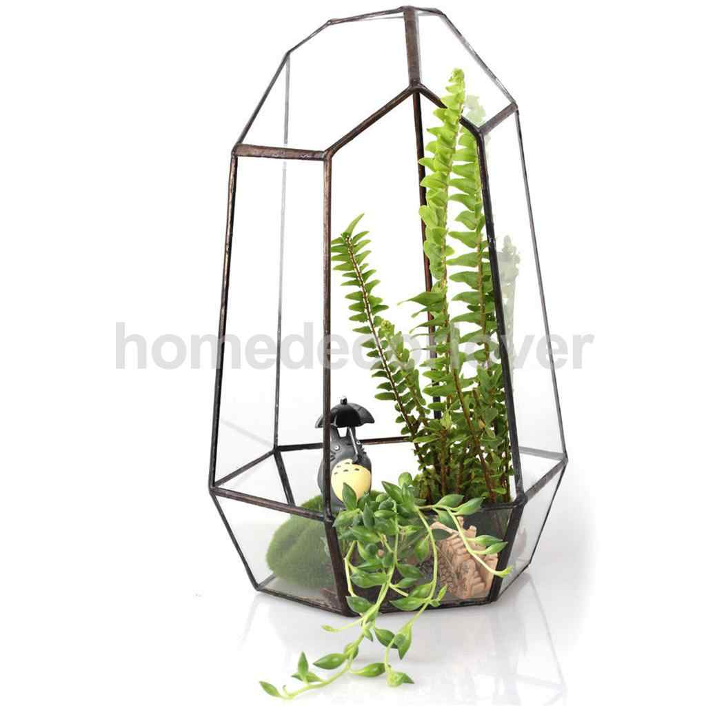 Không Đều Kính Hình Học Terrarium Hộp Để Bàn Mọng Nước Vật Có Dụng Cụ Bào Hoa Rêu Thạch Nam Nồi