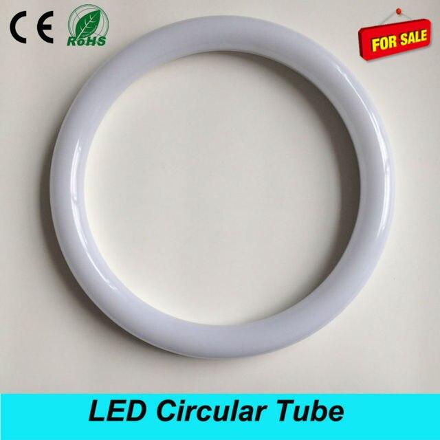 Circline Light Bulb Shelly Lighting