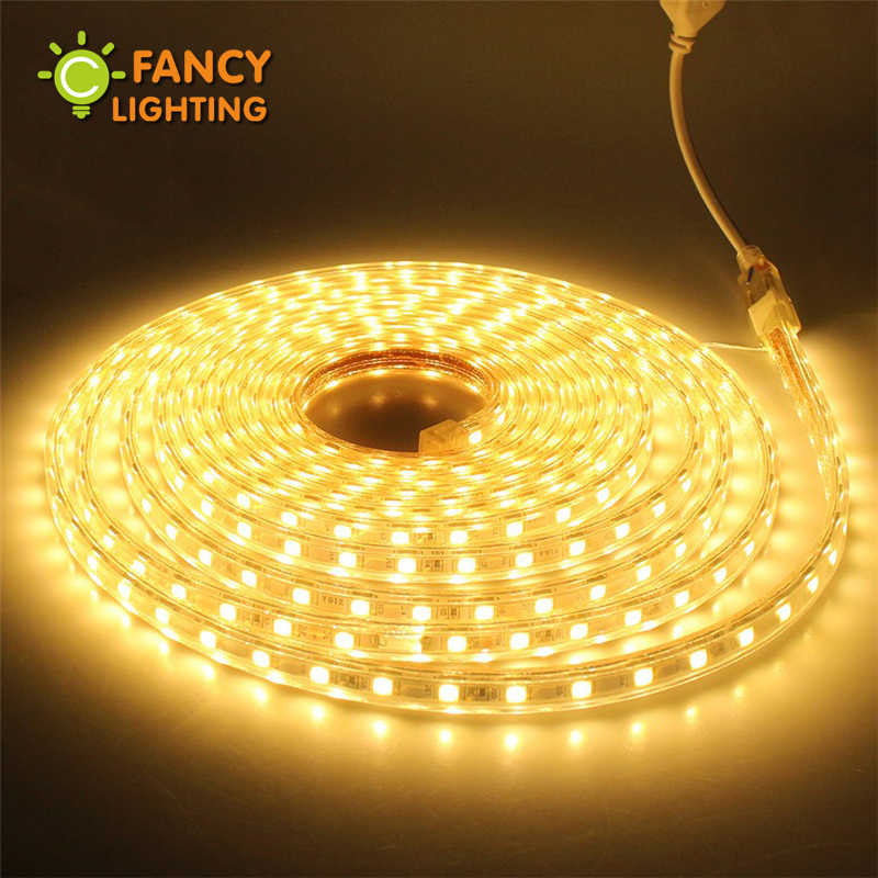 Led strip light 220V Waterproof diode tape SMD5050 60chips/m rgb warm/cold white Blue led light for outdoor home decor ledstrip
