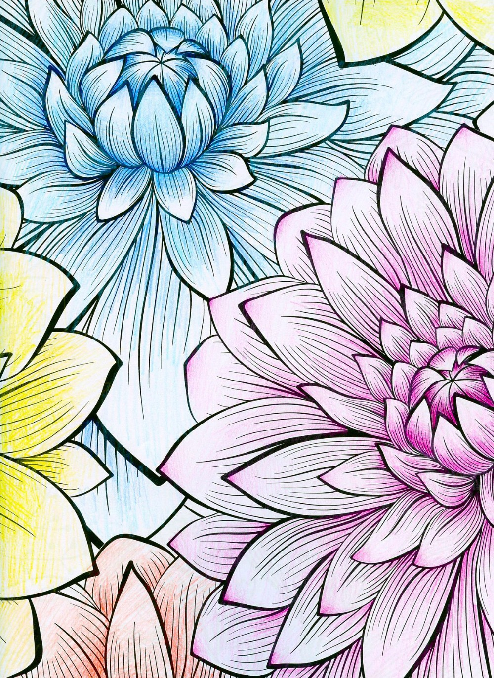 online shop natural wonders coloring book for adults children relieve stress picture painting drawing colouring art creative books aliexpress mobile - Drawing And Colouring