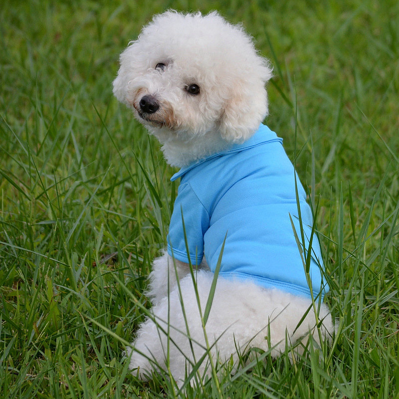 Y2033 new style Dog Vests Dog Supplies fashion Pet vests