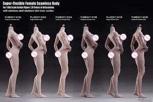 Image 2 - TBLeague 1/6ผู้หญิงBody Figurine Pale Suntanผิวไม่มีรอยต่อหญิงรูปคอลเลกชันสำหรับ12นิ้วรูป