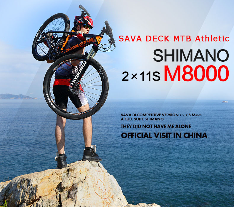 Mountain Bike 700 -1
