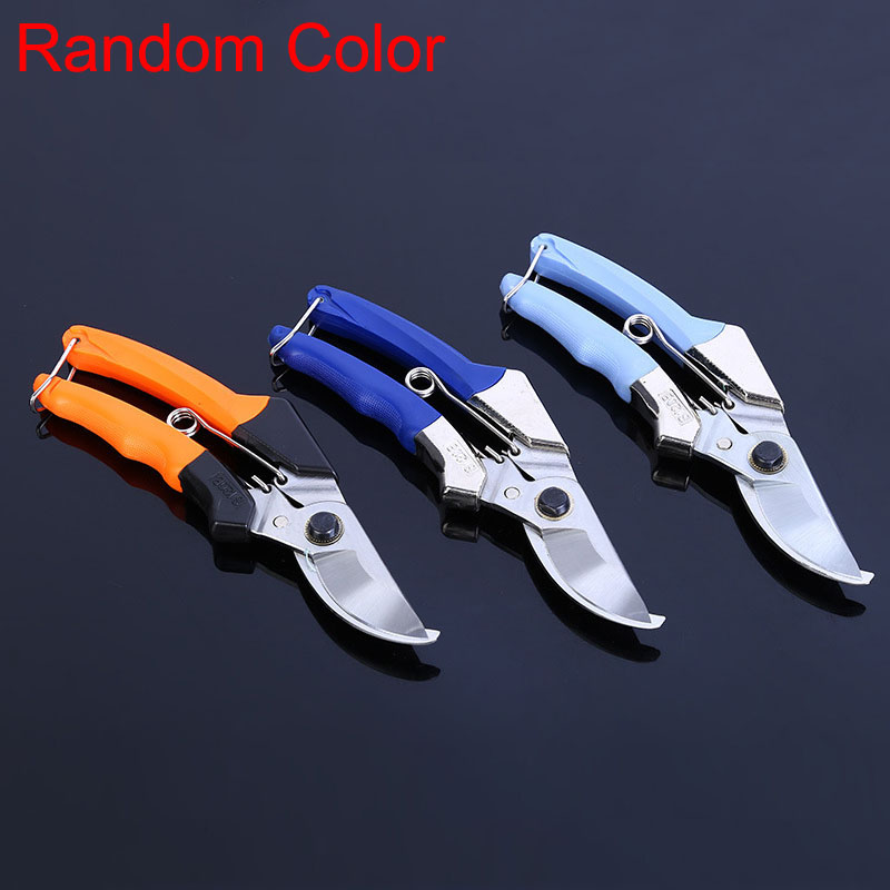 Agricultural fruiting branches cut pruning shears garden design gardening flowers cuttings tools