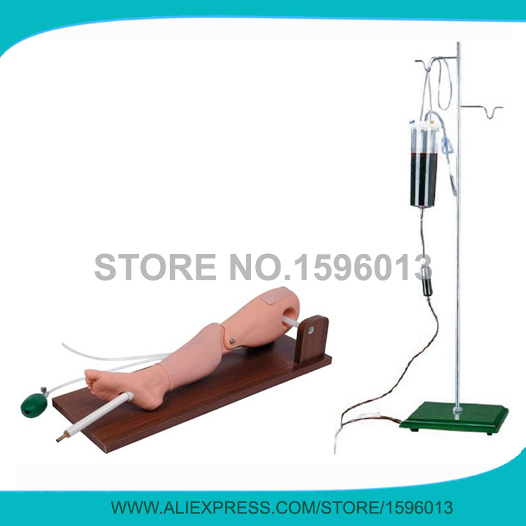 advanced bone marrow puncture and femoral venipuncture simulator,Bone Marrow Puncture Simulator model high quantity medicine detection type blood and marrow test slides