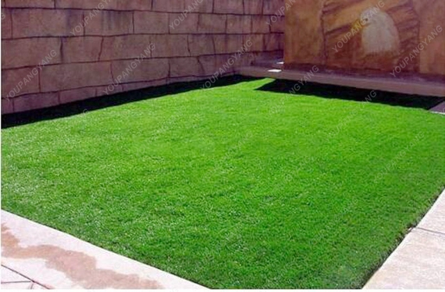 200pcs Turfgrass Grass plants Evergreen Lawn bonsai Green Source Golf Soccer Field Grass planting Free Shipping